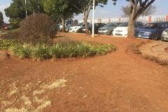CLINIX-Naledi-Before-(1)